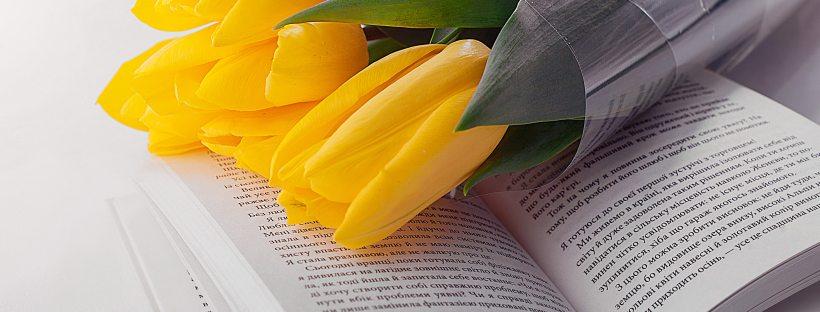 yellow tulips lying on an open book